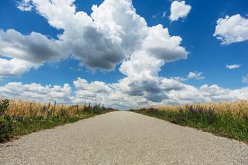 Landstrasse mit Quellwolken