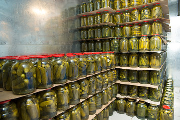 gurtsov conservation. Fresh cucumbers in jars