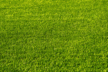 Green football field grass.Texture
