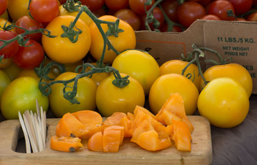 Samples of Heirloom Tomatoes
