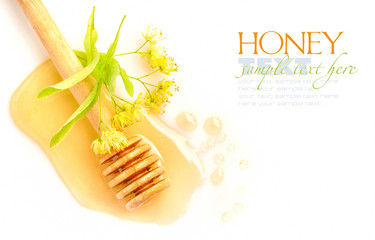 Honey dipper with honey with flowers of linden on white backgrou
