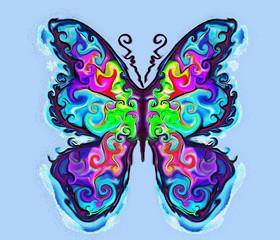 butterfly ,