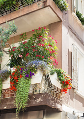 The flowers on the balcony