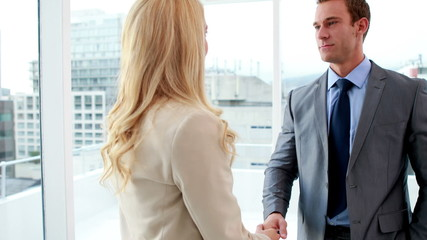 Handsome businessman shaking hands with blonde colleague