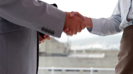 Business people shaking hands by large window