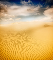 Beautiful sand dunes in the Sahara deser