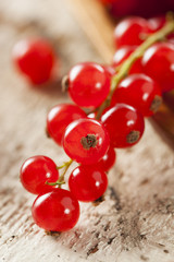 Organic Raw Red Currants