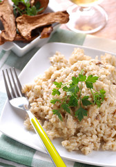 risotto ai funghi porcini con ingredienti