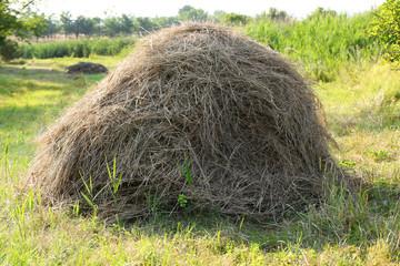 Haystack in field