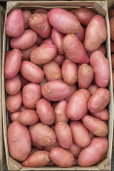 Farmers market red potatoes in a wooden crate background