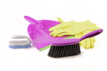 Dustpan brush and gloves