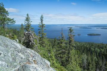 View from the Koli to lake Pielinen