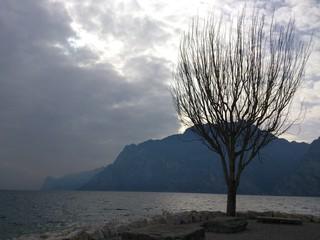 Lago d'inverno in una giornata grigia
