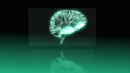 Revolving transparent human brain graphic