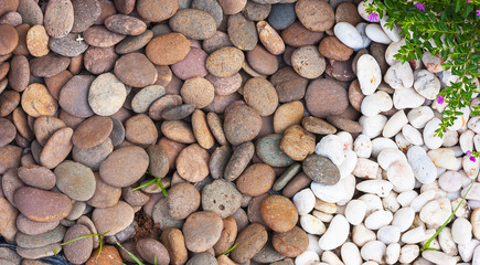 Multi-colored river rocks