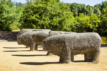 The Bulls of Guisando,celtiberian sculptures located in Avila