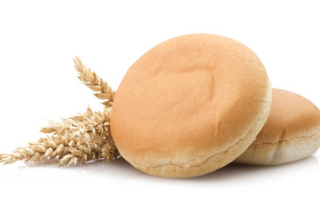 Sandwich for hamburger with ears of corn on white