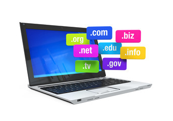 Laptop with Domain Names