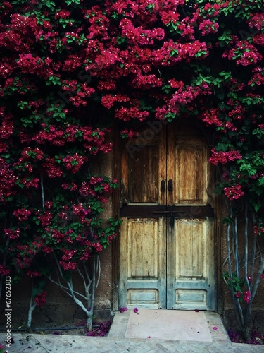 canvas print picture secret garden in marrakech