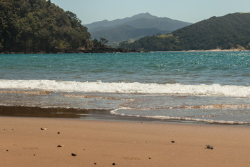 sandy beach at Waikawau Bay, Coromandel Peninsula