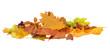 Herbst 46