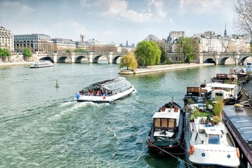 Ile de la Cite Island with the Pont Neuf bridge, Paris