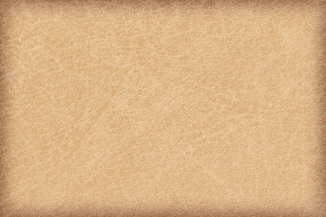 Antique Parchment Vivid Light Brown Vignette Grunge Texture