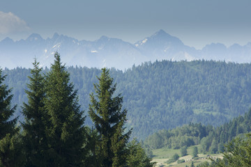 The Tatra Mountains, view from The Gorce Mountains