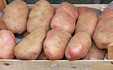 Red  potatoes in crate