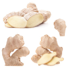 Collection Ginger root isolated on a white background