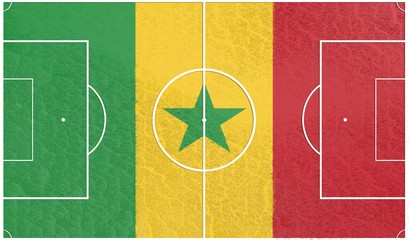 football field textured by senegal national flag