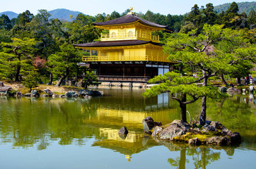 Golden Pavilion Kinkakuji Temple at Japan