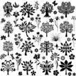 Botany plants set