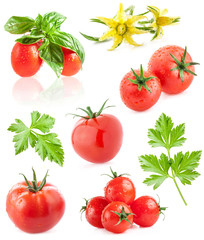 Collection of tomatoes isolated on white background