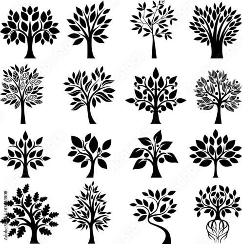 Fototapeta Tree set I