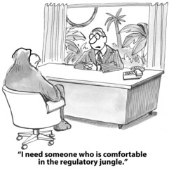 """I need someone who is comfortable in the regulatory jungle."""