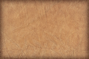 Old Cowhide Creased Crumpled Grunge Texture Sample - Detail