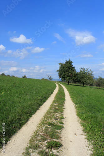 canvas print picture wanderweg
