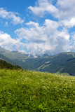 Sommerlandschaft in Tirol