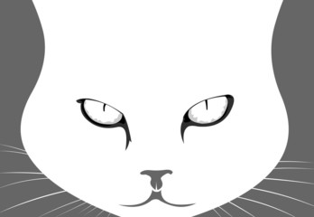 Mad angry cat portrait vector illustration