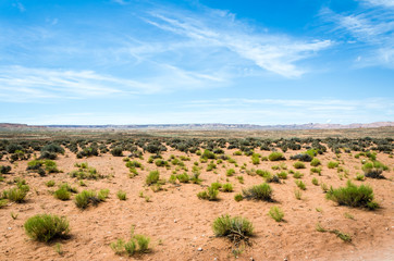 Wüste USA
