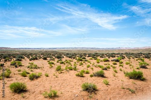 Fotobehang Natuur Park Wüste USA