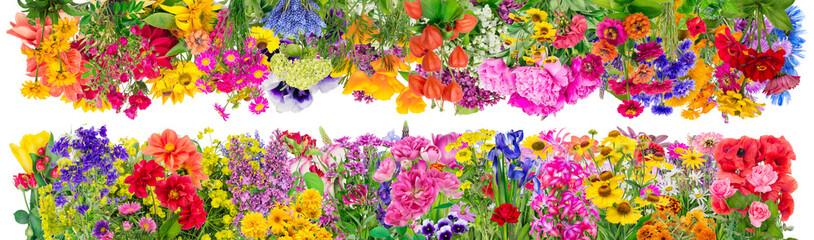 Fantastic  floral  borders
