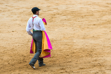 Torero En La Plaza De Toros. España