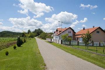 Road Through a Village II