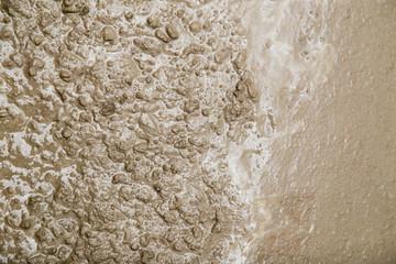 fresh concrete mixture
