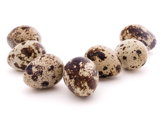 Quail egg isolated on white background cutout
