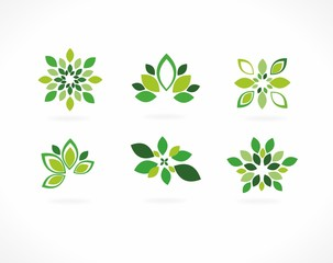 Stylized vector - green leaves