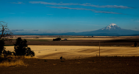Rural Washington with Mt. Adams in the Distance