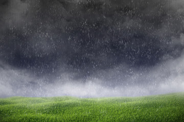 Thunderstorm with on green meadow